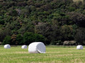 Plastic silage wrap waste on farm