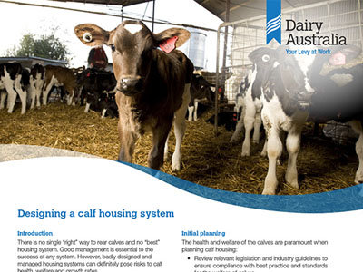 Designing a calf housing system
