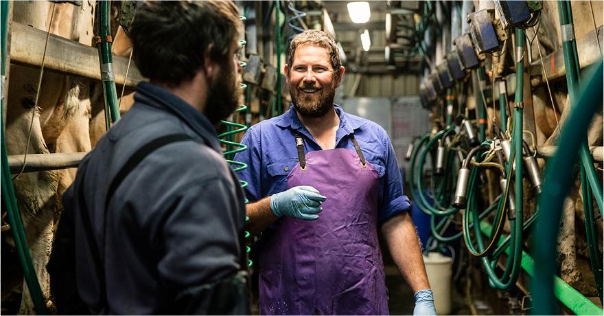 Farmers talking at milk processing