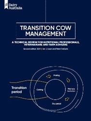 Transition cow management for dairy farmers